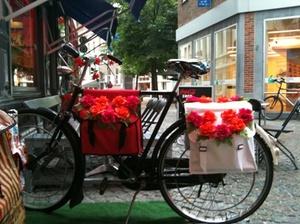 Bike_with_flower