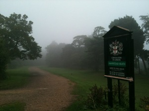 Run_foggy