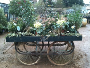 Petersham_nurserieswagon
